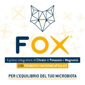 Fox bustine